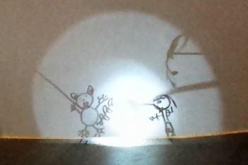 shadow puppet capture